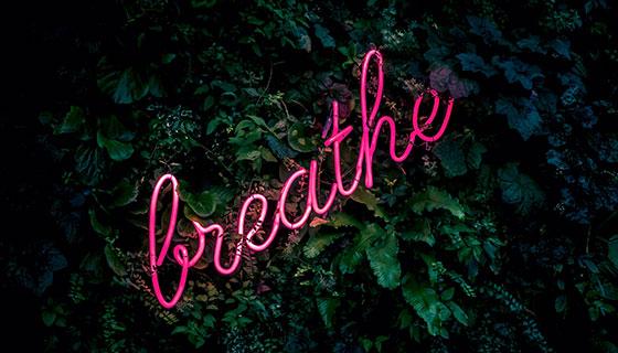 services-breathe